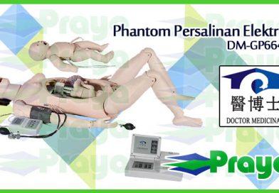 Manikin Persalinan Elektrik | Phantom Persalinan DM-GP6642